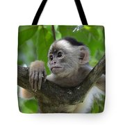 Monkey Business Tote Bag by Bob Christopher