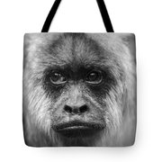 Monkey Eyes Tote Bag