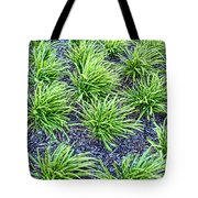 Monkey Grass Abstract Tote Bag