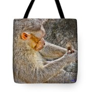Monkey Playing With Tail Tote Bag