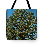 Monkey Puzzle Tree E Tote Bag