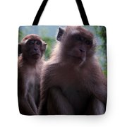 Monkey's Attention Tote Bag