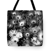 Monochrome Asters Tote Bag