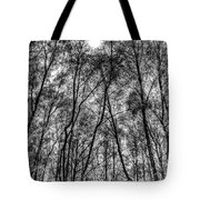 Monochrome Forest Tote Bag