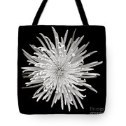 Monochrome Spider Chrysanthemum  Tote Bag