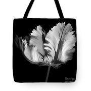 Monocrhome Parrot Tulip Tote Bag