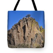 Monolith At Indian Lodge Tote Bag