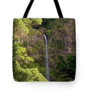 Montagne D'ambre National Park Madagascar 3 Tote Bag