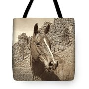 Montana Horse Portrait In Sepia Tote Bag
