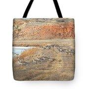 Montana Spring Thaw Tote Bag
