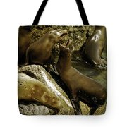 Monterey Bay Where The Seals Play Tote Bag