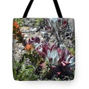 Monterey Indian Paintbrush And Ice Plant Tote Bag by Bruce Gourley