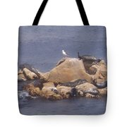 Monterey Sun Bath Tote Bag