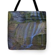Montour Falls Fall Panorama Tote Bag