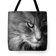 Moody Cat Tote Bag