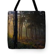 Moody Forest Happy Sun Tote Bag