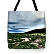 Moody Mother  Tote Bag