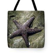 Moody Starfish I Tote Bag
