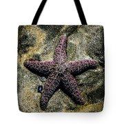 Moody Starfish IIi Tote Bag