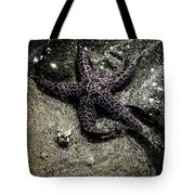 Moody Starfish Iv Tote Bag