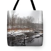 Winter's Moods Tote Bag