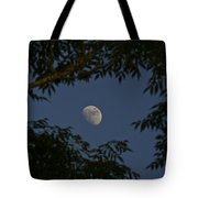 Moon Among The Branches Tote Bag