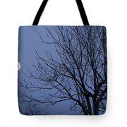 Moon And Bare Tree Tote Bag