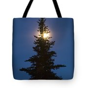 Moon Behind Spruce Tote Bag