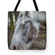 Moon Eyed Horse Tote Bag