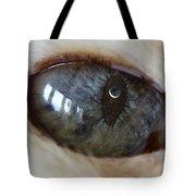 Moon In Cats Eye Tote Bag
