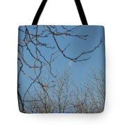 Moon On Treetop Tote Bag