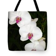 Moon Orchid With Purple Center Tote Bag