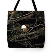 Moon Through Pines Tote Bag