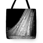 Moonflower And Rainwater  Tote Bag