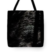 Moonlight On The Hillside Tote Bag