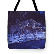 Moonlight Visitors Tote Bag