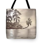 Moonlight Wakulla Springs Tote Bag