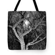Moonshine 2 Tote Bag