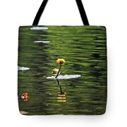 Moore State Park Lily Pond 2 Tote Bag