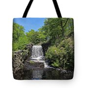 Moore State Park Waterfall 3 Tote Bag