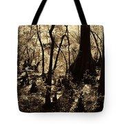 Moores Creek Swamp Tote Bag