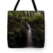 Moorland Fall Tote Bag