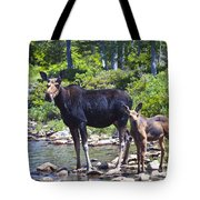 Moose And Baby 4 Tote Bag