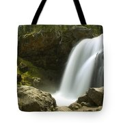 Moose Falls Tote Bag