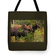 Moose Family At The Shredded Pine Tote Bag