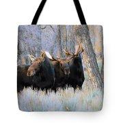 Moose Meeting Tote Bag