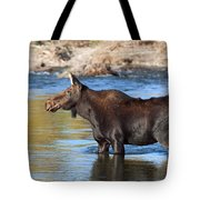 Moose On The  Gros Ventre River Tote Bag