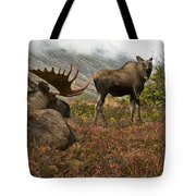 Moose Pair On Anchorage Hillside Tote Bag