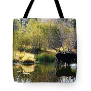 Moose Reflection Tote Bag
