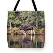 Moose_0587 Tote Bag